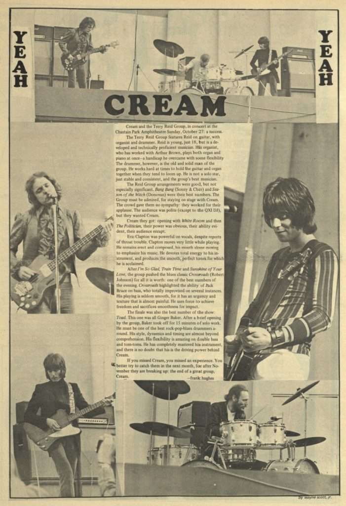 cream-bird-rev