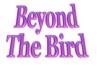 beyond bird